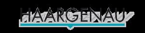 Logo Haargenau Pin Blau Google Maps